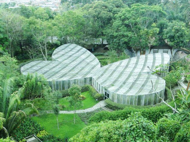 jardin_botanico_quindio_mejor_mariposario_mundo_1